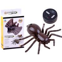 0470  Radiovadāms zirneklis